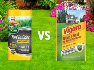 SCOTTS VS VIGORO FERTILIZER