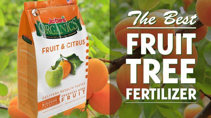 best fertilizer for fruit trees